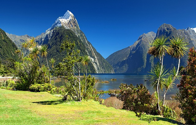 Cheap Flights New Delhi to Auckland,New Zealand Round trip from ₹28,000 ONLY!